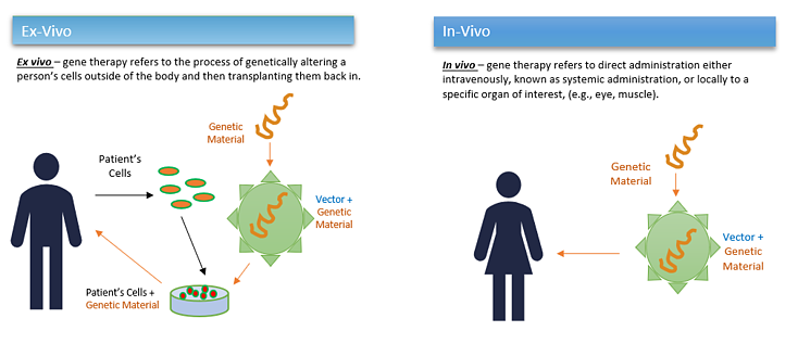 Intext Image4_Cell-gene-therapy-and-viral-vectors _EDL_(2021-4-28)-1